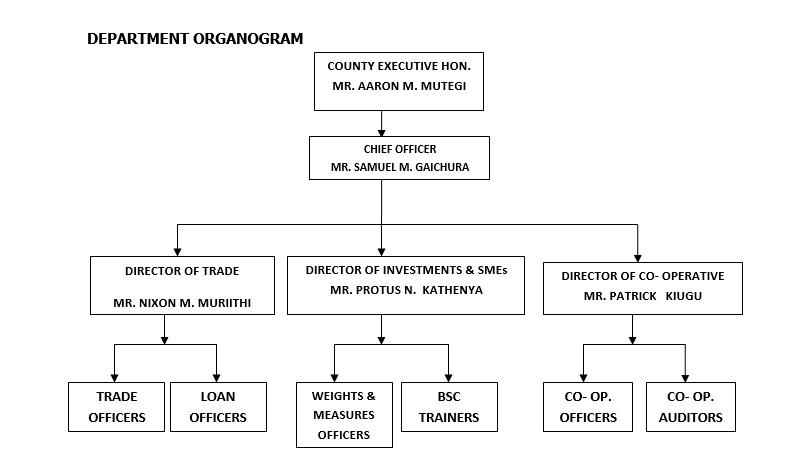 Department Organogram